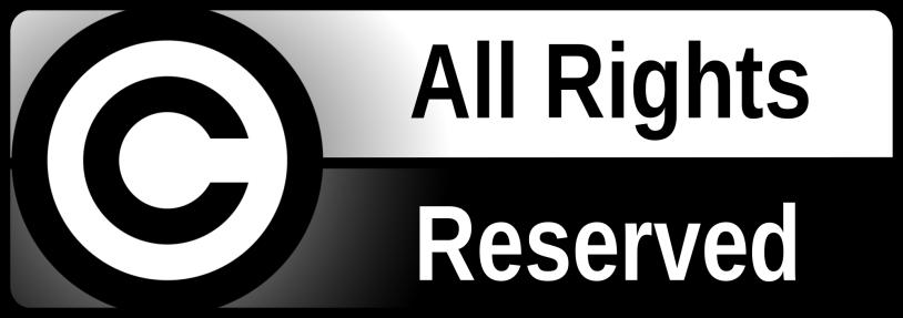 L'unico asset per autori ed editori oggi è il copyright